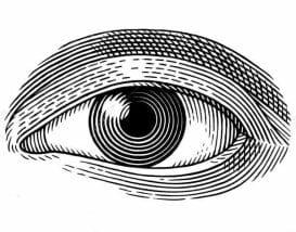 Vision & Proprioception