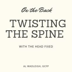 A lesson about twisting the spince