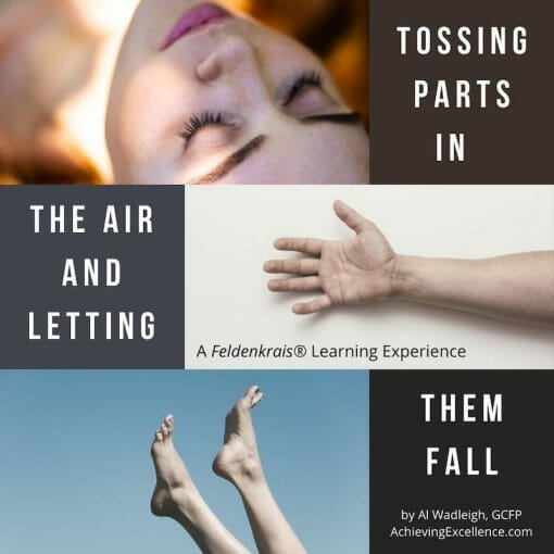 Tossing Parts in the Air and Letting them Fall